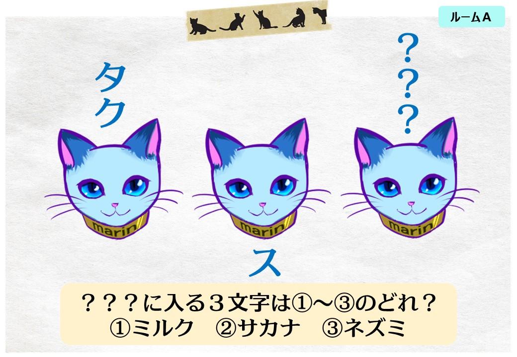 スライド8猫